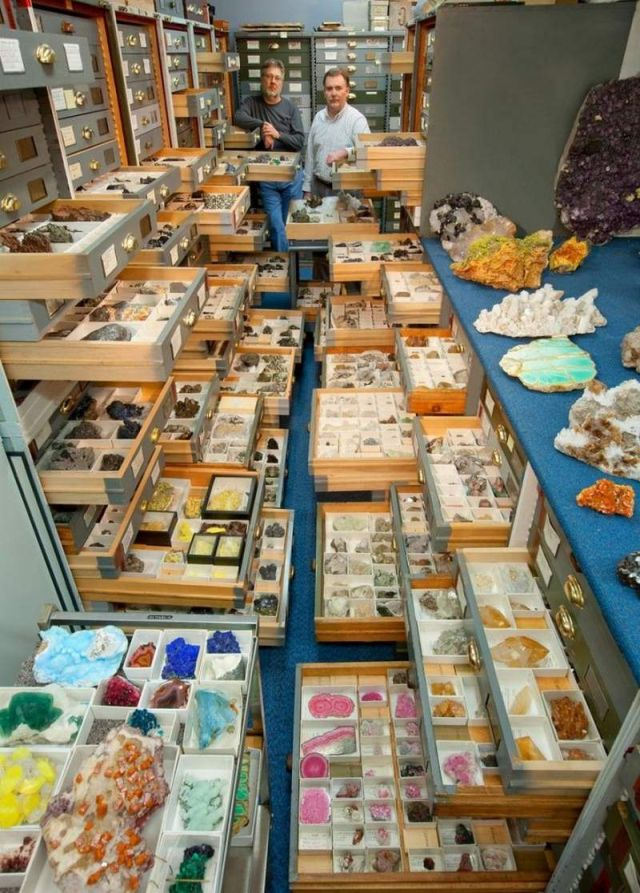 Secret Collections of The National Museum of Natural History (6)