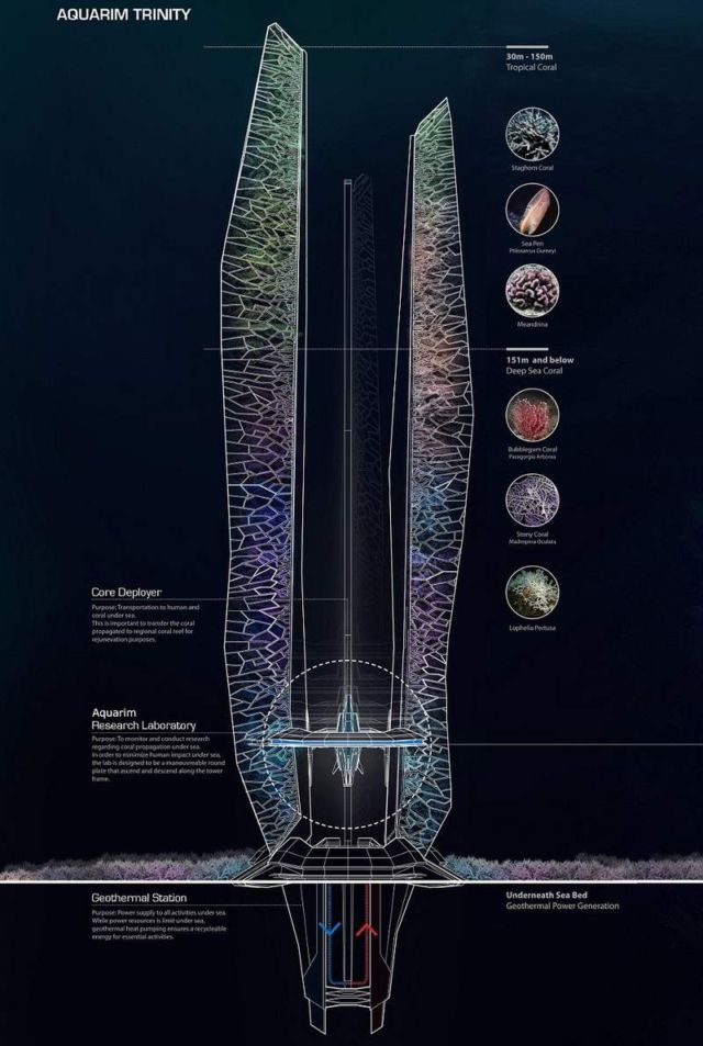 Underwater skyscrapers concept to revive coral reef (4)