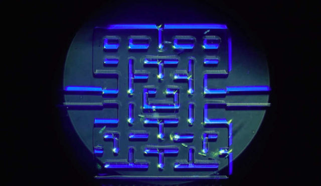 A microscopic game of Pac-Man