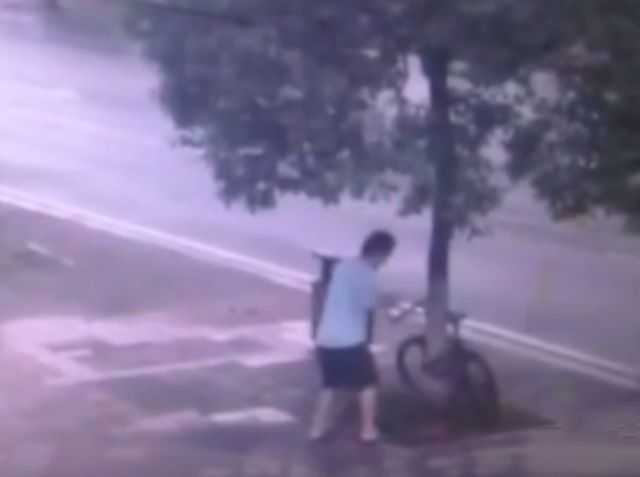 Ruthless Thief cuts a tree to Steal a Bike (1)