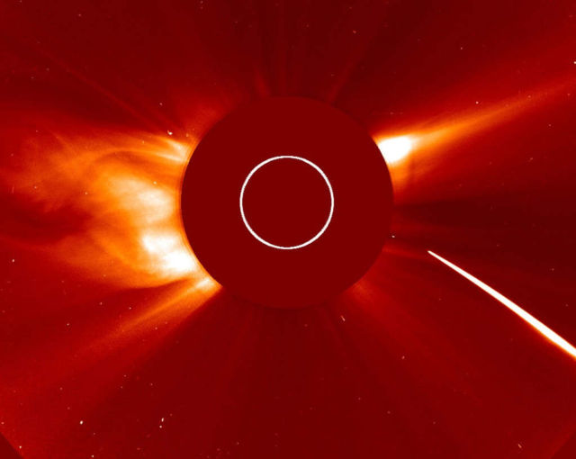 See a Bright Comet swallowed by the Sun (1)