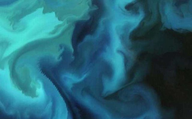 Plankton Bloom in the Barents Sea