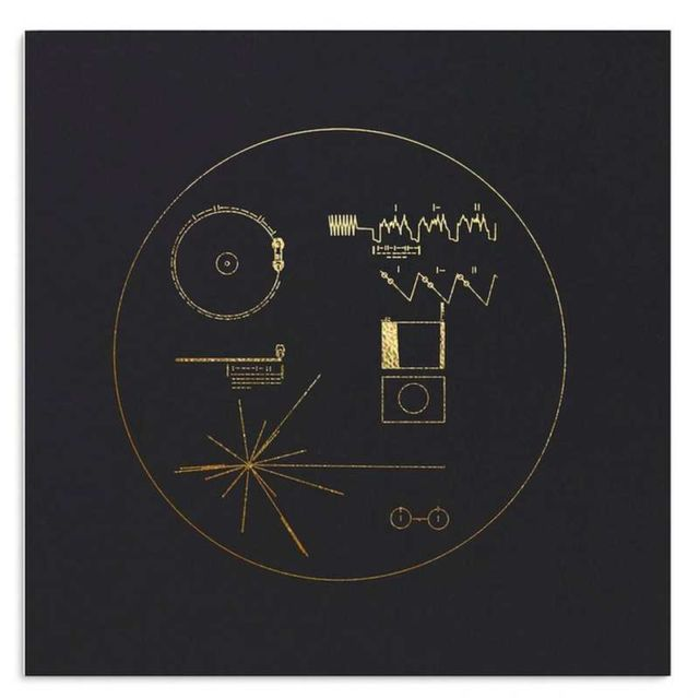 Voyager Golden Record- 40th Anniversary Edition (2)