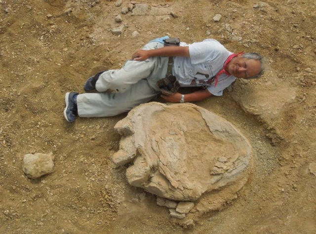 dinosaur-footprint-among-largest-on-record-discovered-1