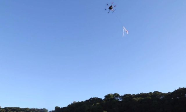 drone-autonomously-removes-rogue-drones-from-the-sky-1