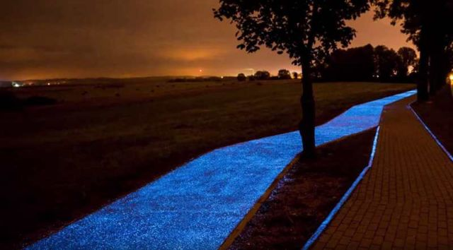Glow-In-The-Dark Bicycle Path (3)