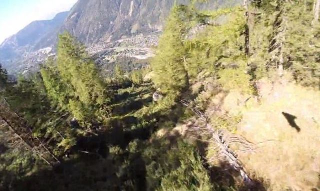 this-guy-survives-a-base-jump-wingsuit-through-tree-1