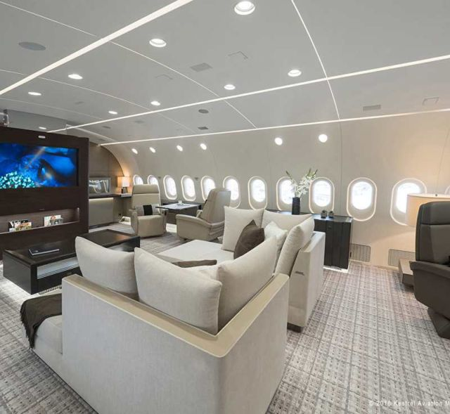 787 Dreamliner purchased as a private jet (4)