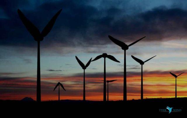 Tyer Wind biomimic wind converter (2)