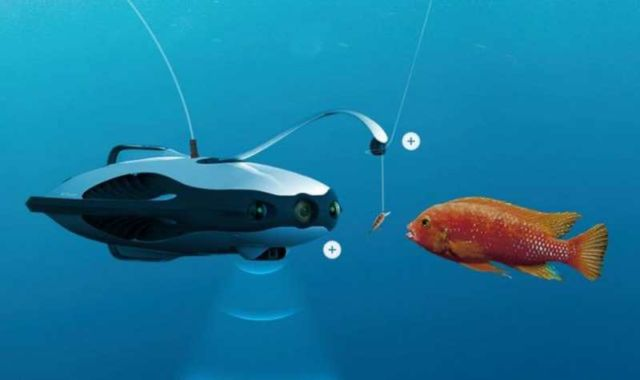 Underwater Drone That Detects Fish