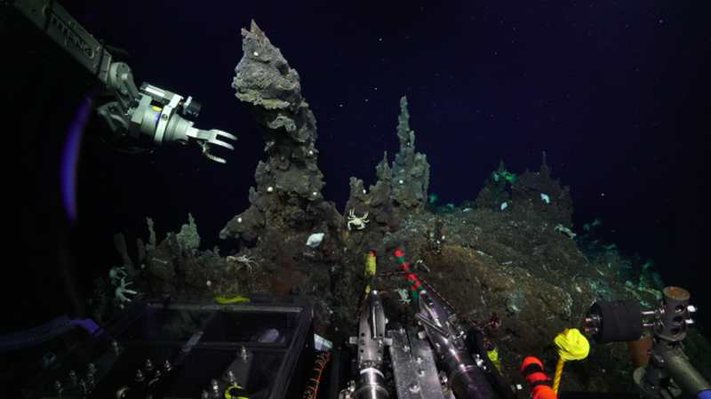 Unexplored Ocean Depths in Extreme Life Conditions (3)