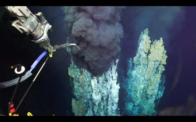 Unexplored Ocean Depths in Extreme Life Conditions (2)