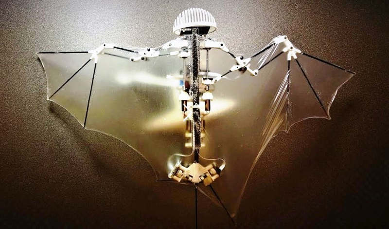 Advanced Robotic Bat can Fly like the Real One (1)