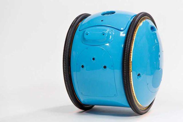 Piaggio Gita cargo bot (1)
