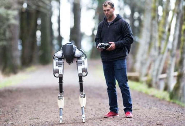 The first steps of new Walking Robot