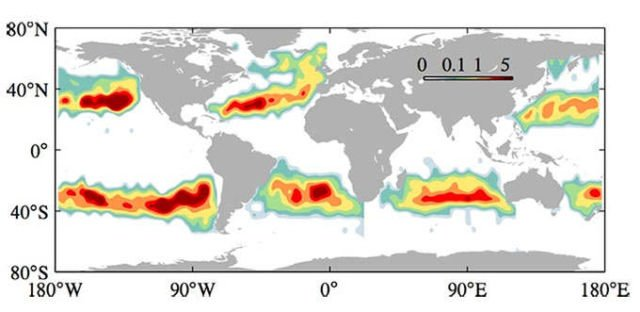 This is how Garbage Patches form in the world's Oceans