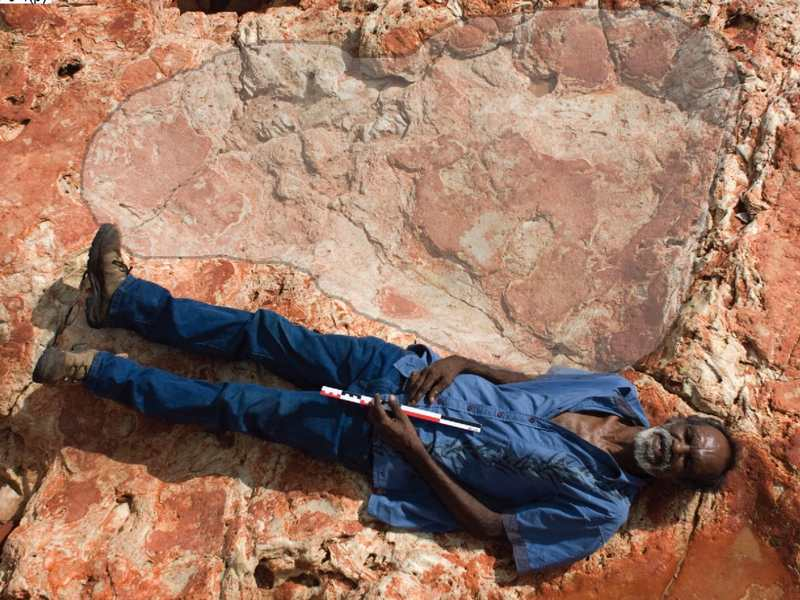 Largest Dinosaur Footprint ever has been found