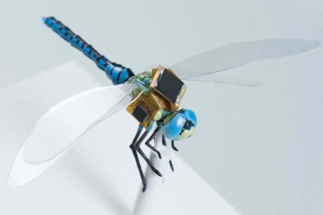 RoboDragonfly