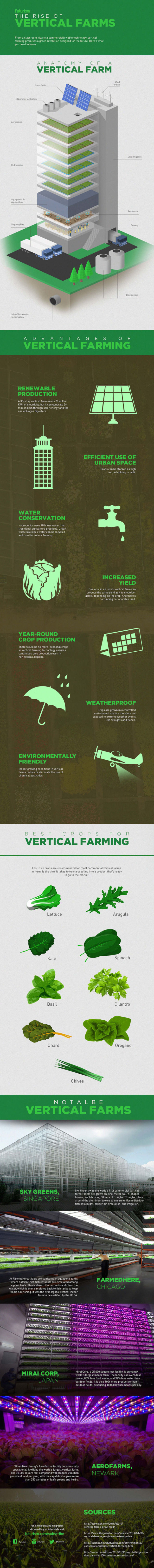 The rise of Vertical Farms - infographic