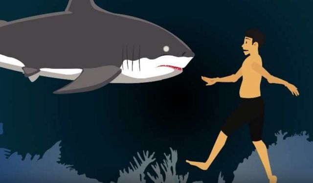 5 survival myths that could get you killed