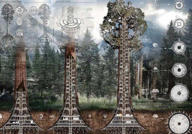 Giant Sequoia Skyscraper concept (1)
