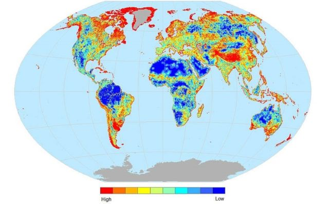 Map reveals the areas where Animals are at risk of Extinct