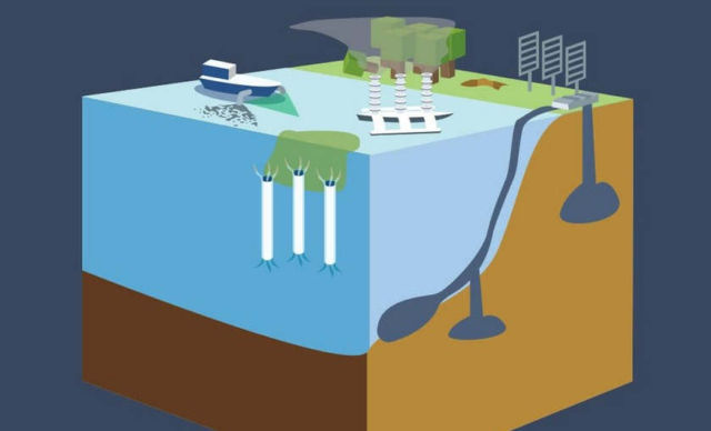 Technological Fixes for Climate Change