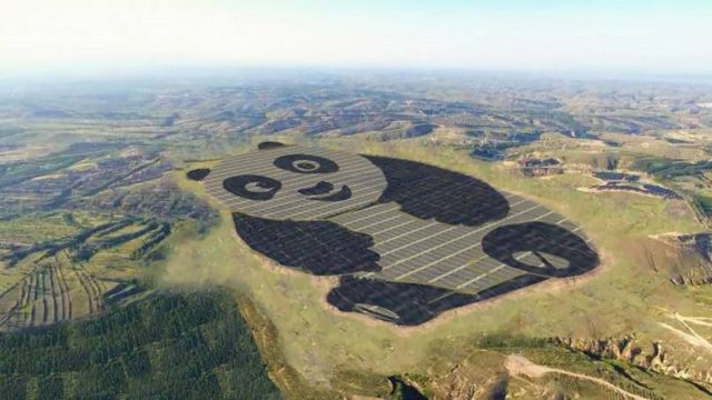 World's most adorable solar farm in China