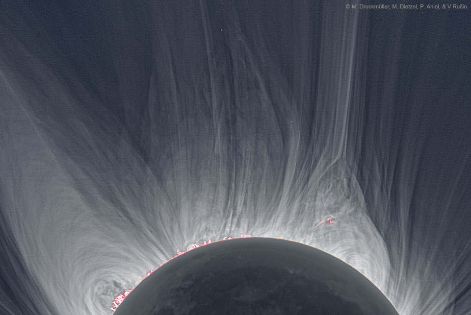 Detailed view of a Solar Eclipse Corona