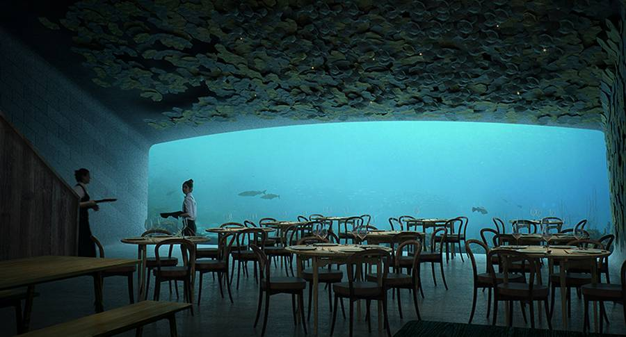 Europe's first Underwater Restaurant (6)