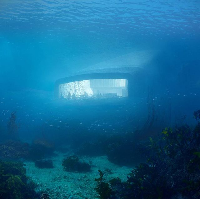 Europe's first Underwater Restaurant (4)