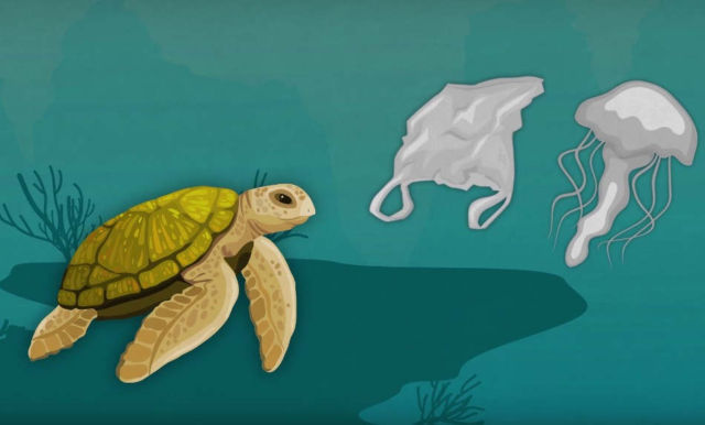 How Much Plastic is in the Ocean