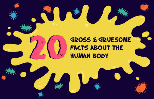 20 Gross and Gruesome Facts about the Human Body