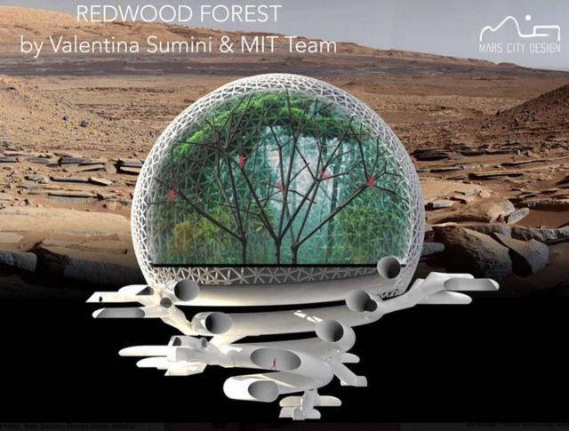 MIT's prize-winning Martian City design
