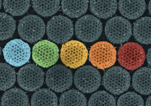 Synthetic material acts like Insect's Camouflage