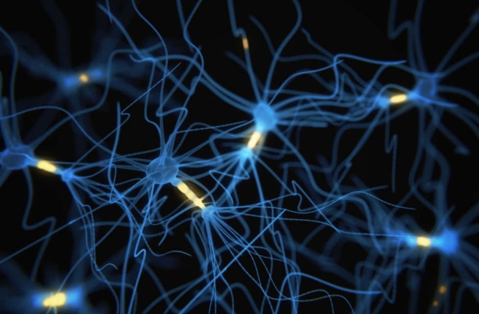 A new Computer Chip that work like the Human Brain