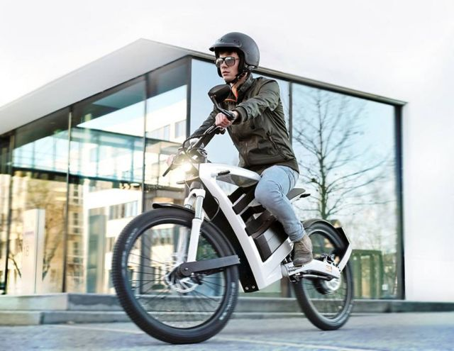 Feddz electric bike (3)
