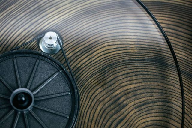 Audiowood Barky Turntable (1)