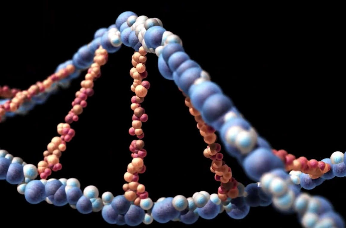 DNA could store all of the world's data in a single room