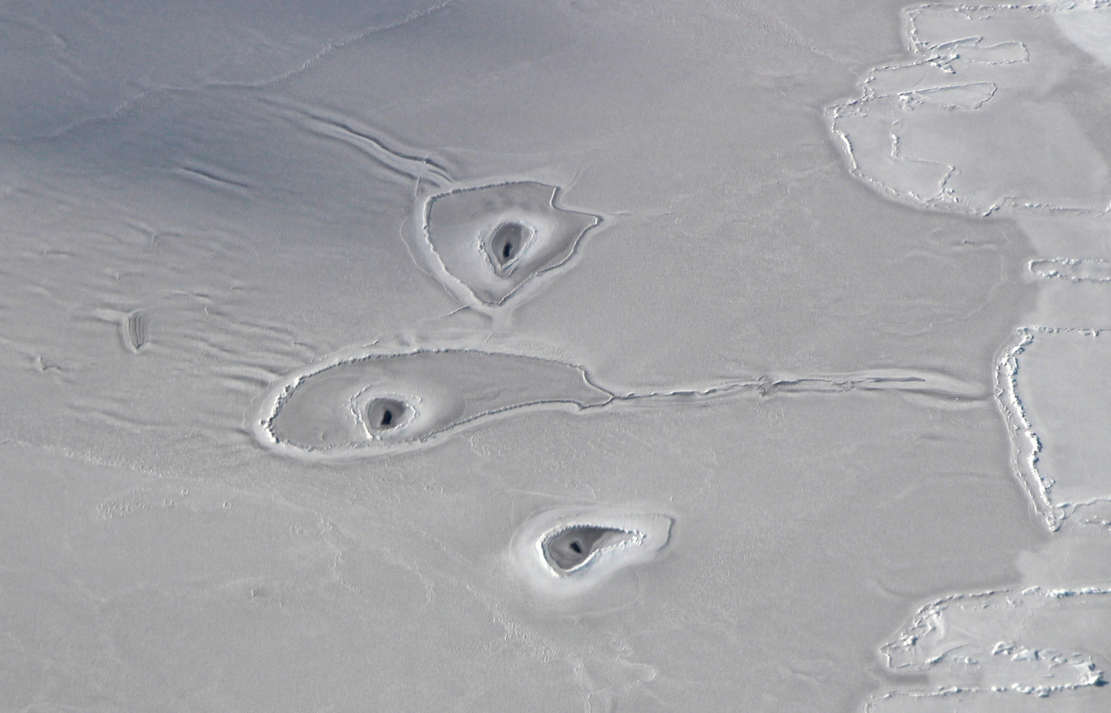 Mysterious Curious Circles in Arctic Sea Ice