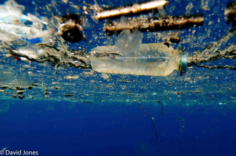Scientists accidentally created a Plastic-eating Enzyme