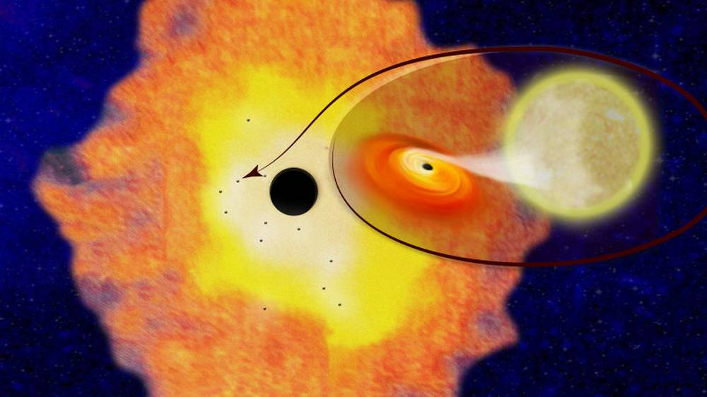 Thousands of Black Holes at the Center of Our Galaxy