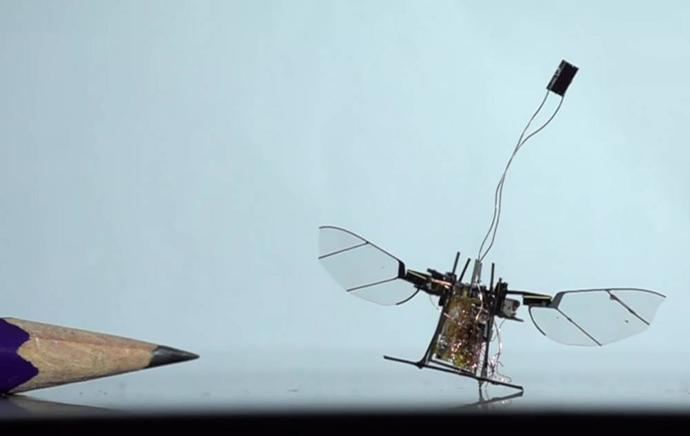 Insect wireless micro-robot first flight
