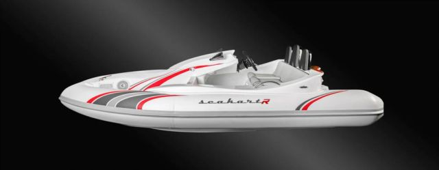 Seakart 335 Watercraft (3)