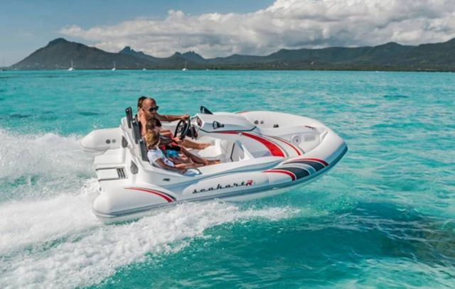 Seakart 335 Watercraft (2)