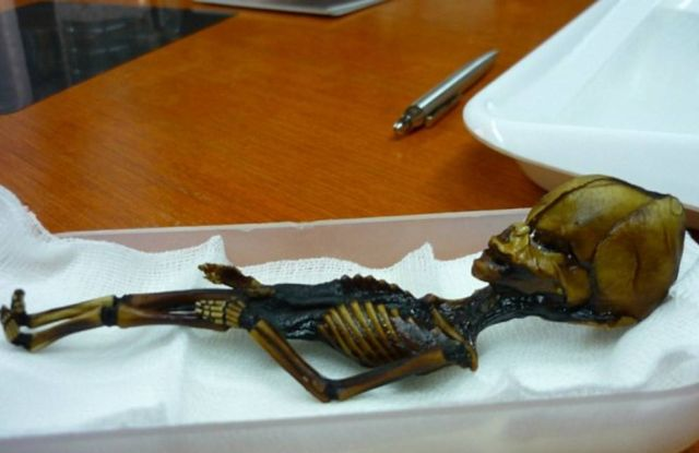 Scientists say 'Alien' Mummy Study was Deeply Flawed