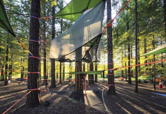 Tentsile Tree Tent (8)