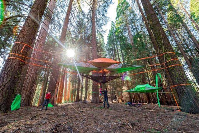 Tentsile Tree Tent (7)