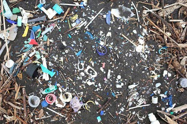 Increase in Plastic waste reaching remote South Atlantic Islands