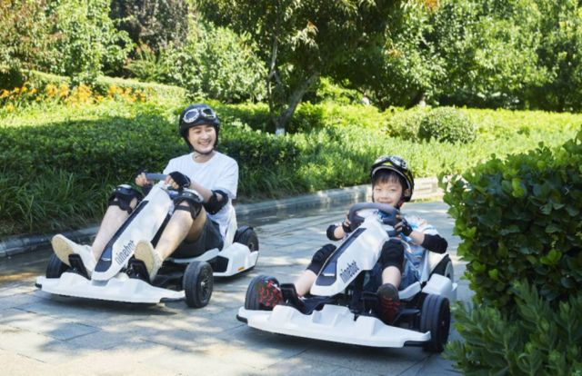 Segway Electric Gokart (3)